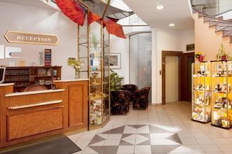 Hotel Concertino Zlatá Husa Jindřichův Hradec 49838424