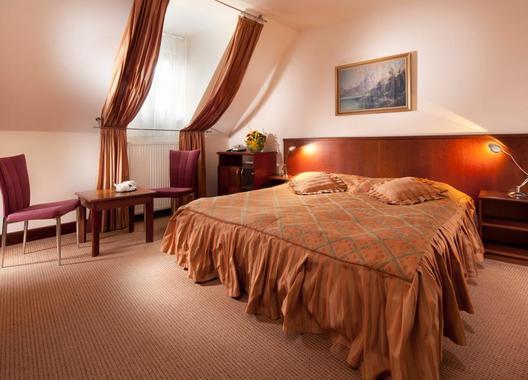 Hotel-Concertino-Zlatá-Husa-41