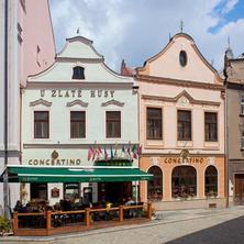 Hotel Concertino Zlatá Husa -Jindřichův Hradec-pobyt-TOP RELAXACE v jižních Čechách - 21 %
