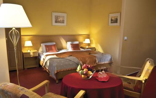 Lázeňský hotel SAVOY 1156972071