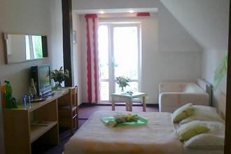 Hotel Maxim Beroun 40615536