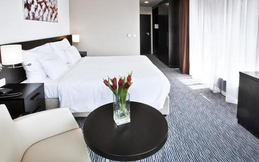 Wellness hotel Vista 1154486331