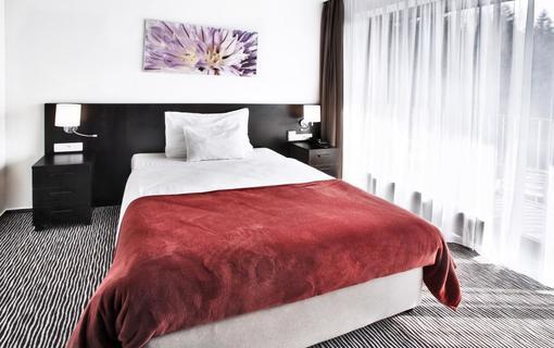 Wellness hotel Vista 1154486347