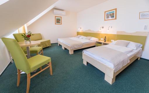 Wellness Hotel Iris Pokoje 9