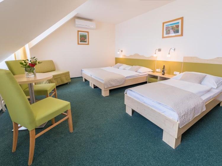 Wellness Hotel Iris Pokoje 9 2