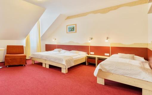 Wellness Hotel Iris Pokoje 11