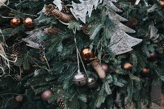 Třeboň-pobyt-Vánoční pobyt v Třeboni