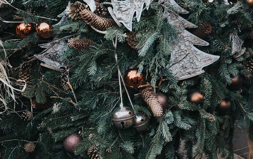 Vánoční pobyt v Třeboni-Hotel Zlatá hvězda 1154804819