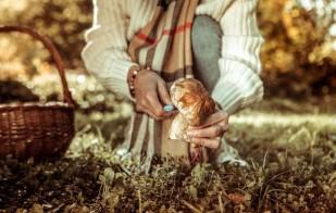Víkendový houbařský ráj v Krkonoších-Pytloun Wellness Hotel Harrachov 1154900715