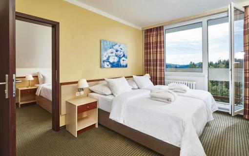 OREA Resort Sklář 1157293335