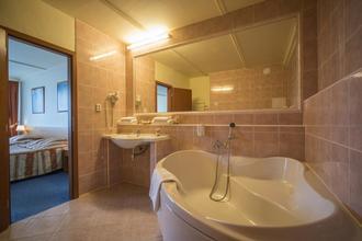 TOP HOTEL Praha 49010038
