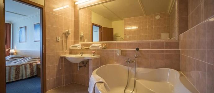 TOP HOTEL Praha 569058352