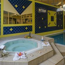 TOP HOTEL Praha-pobyt-Wellness pobyt s polopenzí v TOP Hotelu Praha (víkend)