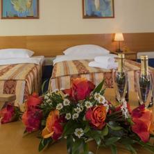 TOP HOTEL Praha 42525660