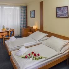 TOP HOTEL Praha 40154788