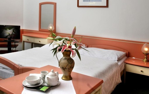 Regenerační program-HOTEL MAXIM 1155886403