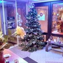 WELLNESS HOTEL SYNOT-Staré Město-pobyt-Vánoční pohádka v srdci Moravského Slovácka ve Starém Městě v Hotelu Synot