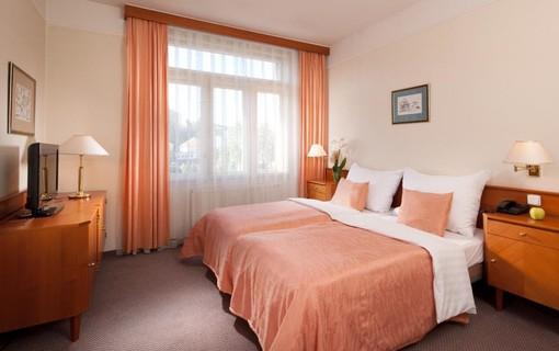 Lázeňská dovolená-Hotel Palace 1148599947
