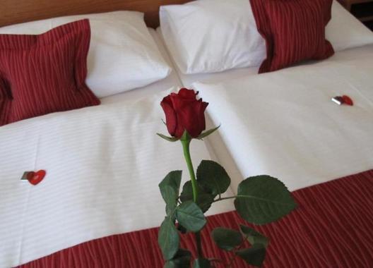 HOTEL-THERESIA-6