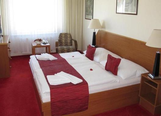 HOTEL-THERESIA-5
