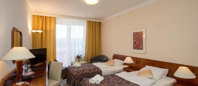 Hotel FONTÁNA Frymburk 1116628734