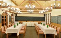 hotel-u-kralovny-elisky_kongresovy-sal-1