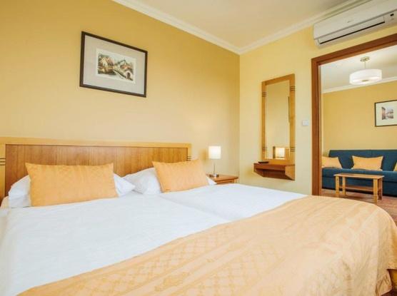 WELLNESS HOTEL STEP 1154498181