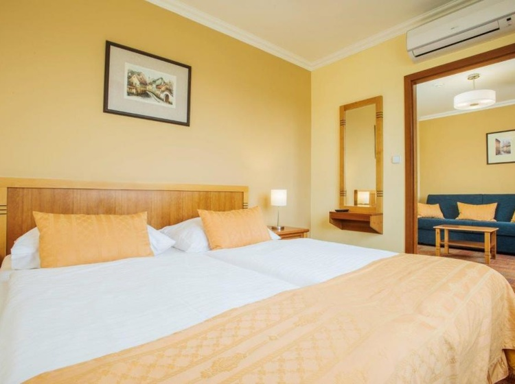 WELLNESS HOTEL STEP 1154498181 2