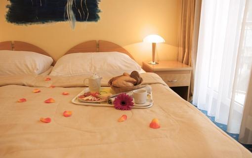 Wellness hotel Jean de Carro 1154264725