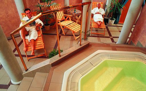 Wellness hotel Jean de Carro 1154264727