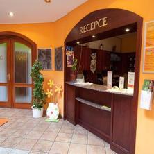 Hotel BOHEMIA relax Františkovy Lázně 41256654