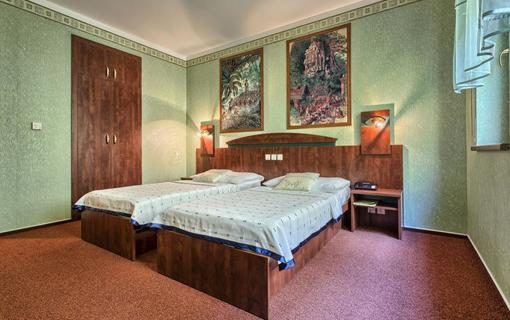 WELLNESS HOTEL BABYLON Dvoulůžkový pokoj
