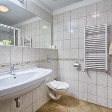 WELLNESS HOTEL BABYLON Liberec 42036000