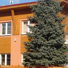 Penzion Na Parní pile Halenkov 39514336