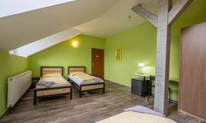 Inter Hostel Liberec Třílůžkový pokoj