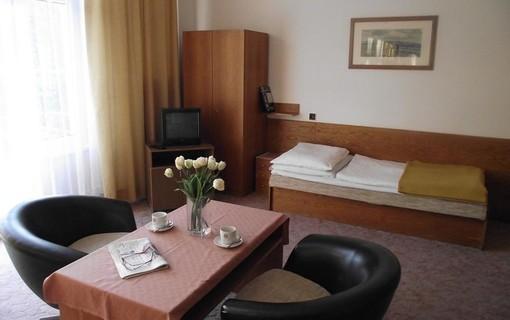 Léčebný pobyt Klasik-Lázeňský dům PALACE 1154819315