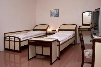 Lázeňský hotel Slezský dům Karlova Studánka 44239904