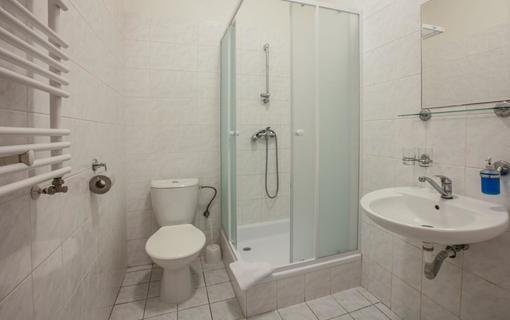 Hotel Zimní lázně 1153862289