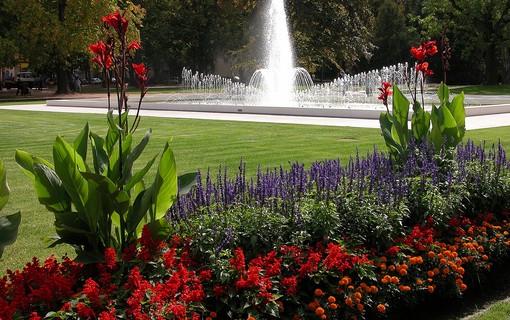 Relaxace v týdnu-Hotel Bellevue - Tlapák 1151492997