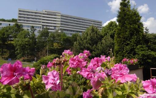 Spa Hotel Běhounek 1153885185