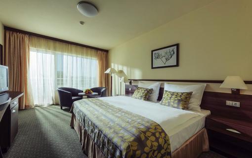 Spa resort Tree of Life 1149092811