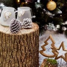 Spa resort Tree of Life -Lázně Bělohrad-pobyt-Vánoční pobyt