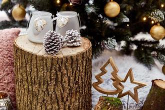 Lázně Bělohrad-pobyt-Vánoční pobyt