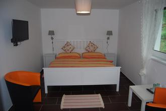 Penzion Pod Hradem Nové Hrady 46309298