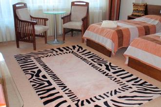 Hotel Afrika-Frýdek Místek-pobyt-Fitness víkend (2 osoby/2 noci)