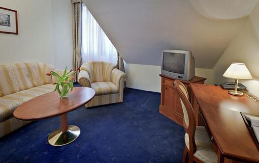 SPA HOTEL ČAJKOVSKIJ 1157546837
