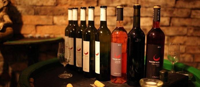 Vinný sklep Krýsa-Kostelec-pobyt-Pobyt s polopenzí v penzionu a Vinném sklepě Krýsa v období září - červen