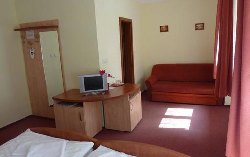 Horský Hotel Excelsior 1153863029