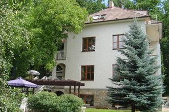 Hotel VILLA CONTI Písek 42885982