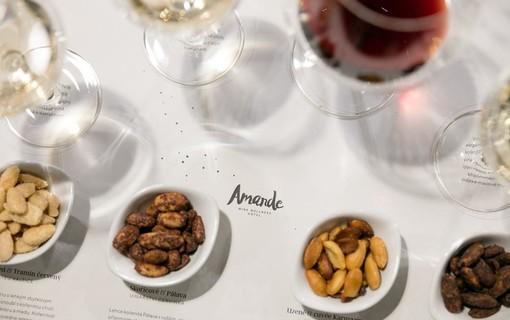 Jsem vinař-Amande Wine Wellness Hotel 1154942557